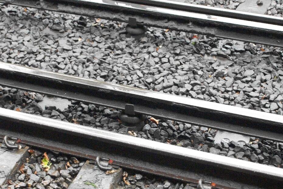 the+third+rail